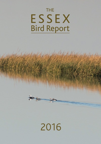 Essex Bird Report 2016
