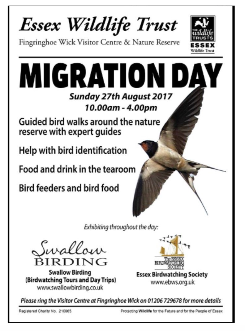 Migration Day Aug 2017