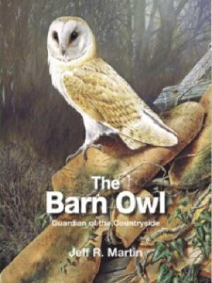 Barn Owl by Jeff Martin